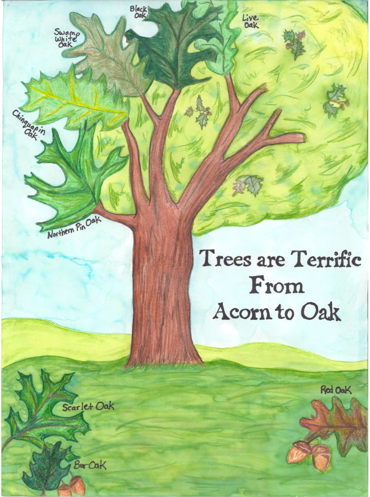 Texas Arbor Day Poster Winner 2012