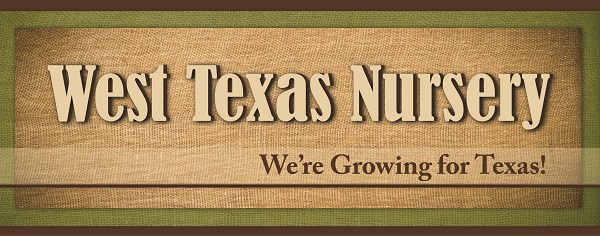 Natural Resource Conservation Programs And Services For Texas Landowners