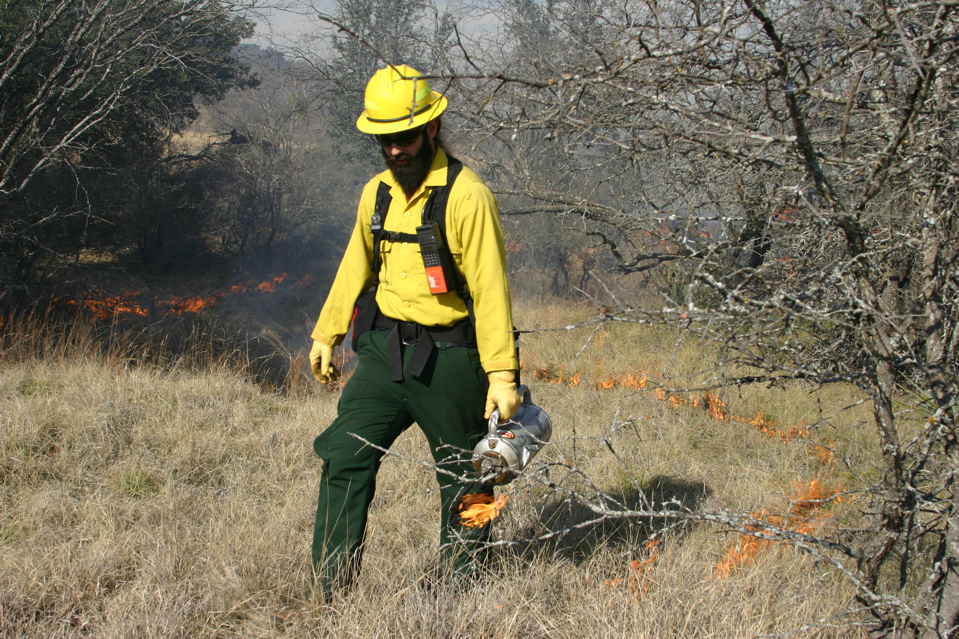 Lighting a Prescribed Burn in Bastrop