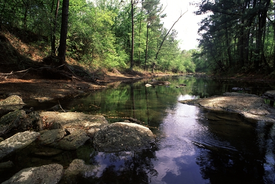West Caney Creek - 2000