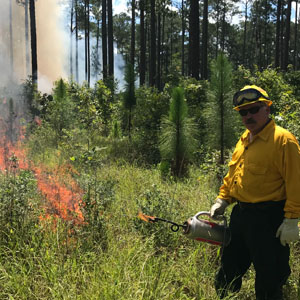 <p>     COLLEGE STATION, Texas – Fire, field and forestry professionals now have additional tools, resources and online checklists to safely and effectively conduct prescribed burns in Texas. 