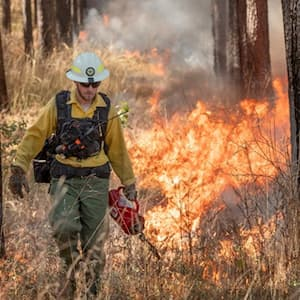 <p>Texas A&amp;M Forest Service, in cooperation with the Texas Army National Guard, plans to conduct a 3,700-acre prescribed burn at Camp Bowie Feb. 25 through 28. Texas A&amp;M Forest Service has been monitoring weather conditions and has scheduled the burn when the weather and fuel conditions meet the prescription. <br /></p>