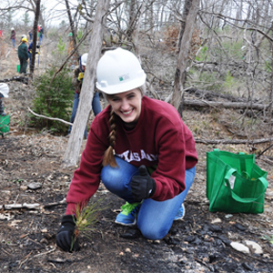 Aggies to Help Plant Trees at Bastrop State Park for Third Year