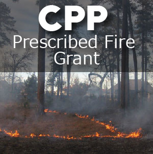 Grant funds available for prescribed burning