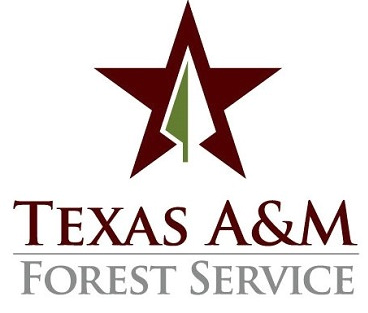 <p>   COLLEGE STATION, Texas – Approximately 500 Texas A&amp;amp;M Forest Service employees gathered today at the agency's annual personnel meeting. The meeting was held at the Frank W. Mayborn Civic &amp;amp; Convention Center in Temple, Texas. 