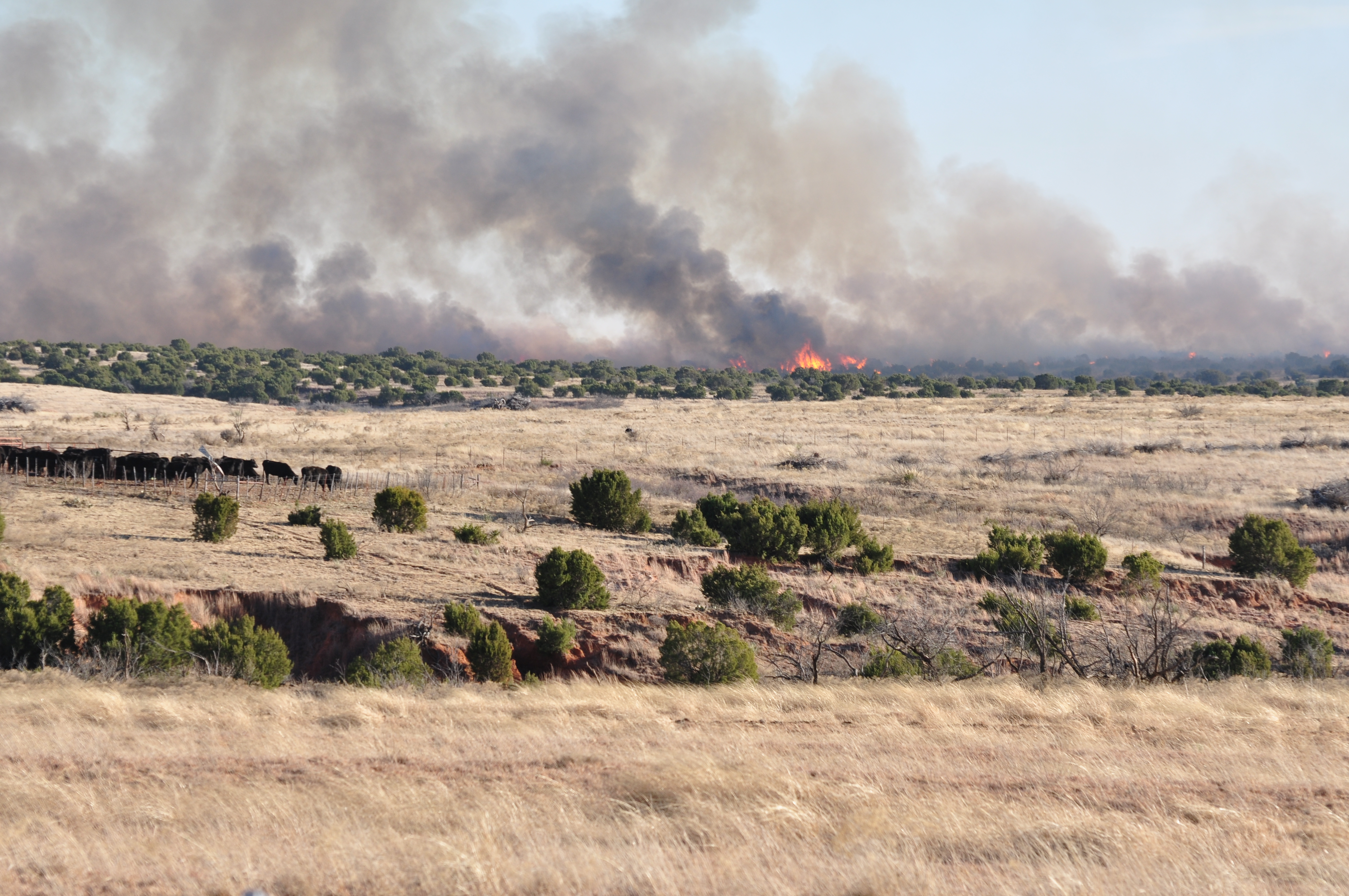 <p>Texas Panhandle landowners are invited to attend a workshop designed to better prepare them for wildfires.  
