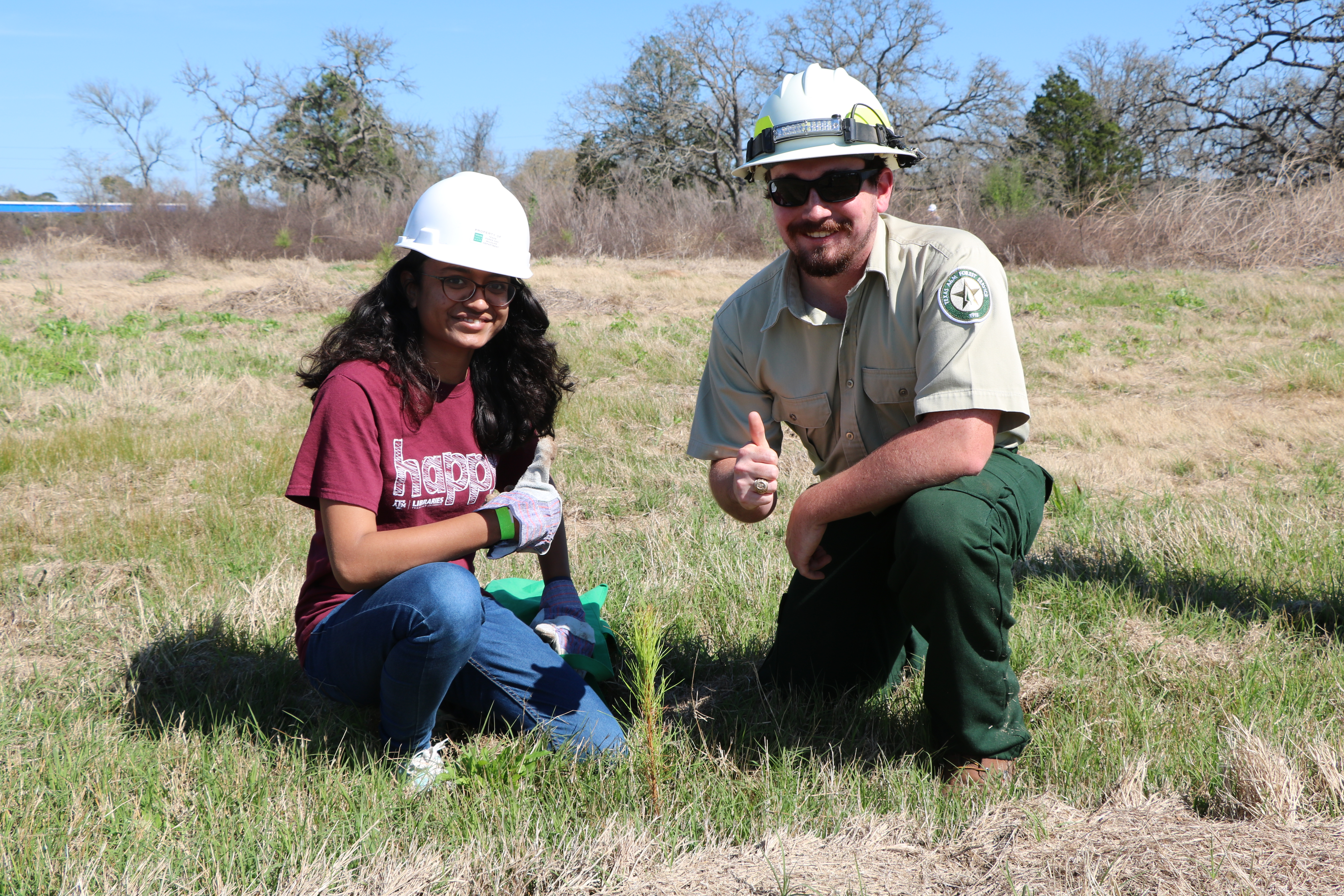 <p>Approximately 4,000 more trees are taking root in wildfire-scarred Texas soil this weekend thanks to the planting efforts of student volunteers from Texas A&amp;M University.</p>