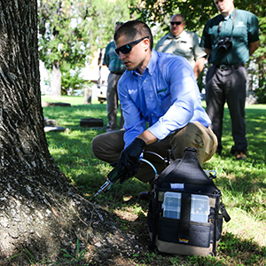 With the recent confirmation of the invasive emerald ash borer (EAB) in Tarrant County, the City of Fort Worth, ArborJet and Texas A&M Forest Service united to protect two regional champion ash trees, the regional champion green ash and the regional champion Texas ash, from the deadly pest.