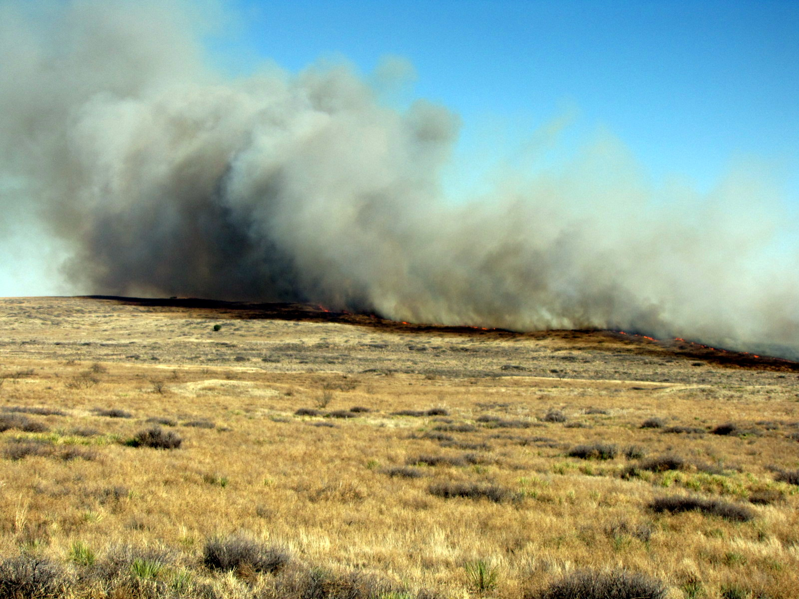 <p>With the Texas winter wildfire season upon us, officials at Texas A&M Forest Service are responding to an increase in wildfire frequency across the state. Yesterday, two Single Engine Air Tankers (SEATS) responding to a wildfire in Erath County were grounded due to the presence of a drone in the wildfire perimeter.</p>