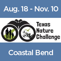 Attention Coastal Bend Texas Families: It's time to get outside and connect with nature