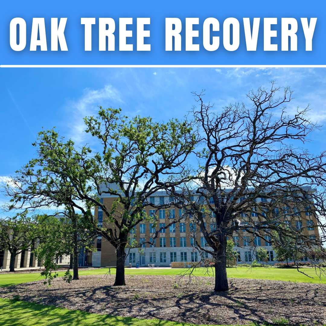 <p>&#160;Driving across Texas has been an interesting occupation for