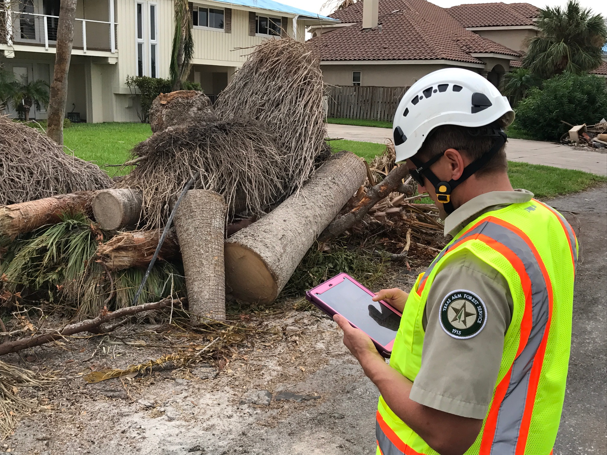 <p>Texas A&amp;M Forest Service recently mobilized Urban Forest Strike Teams to the coastal Texas towns of Rockport, Fulton, Refugio and Victoria to assess damage to the trees on public property resulting from Hurricane Harvey. 