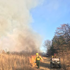Record number of acres treated with prescribed fire in Texas