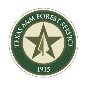In a year of firsts, Texas A&M Forest Service held the agency's annual personnel meeting virtually. Spanning statewide, agency employees gathered together through space and time to recognize the past year's agency accomplishments, employee achievements and to set the tone for the coming year.