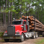 <p>   June 21, 2018&#160; —&#160; LUFKIN, Texas — Angelina Forest Products, LLC recently announced plans to open a $100 million sawmill in Lufkin, Texas.&#160; The softwood mill is expected to be in place by spring of 2019, creating 100 full-time jobs and contributing $52 million to the Texas economy in its first year.&#160; 