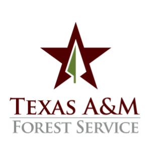 As torrential rainfall from Tropical Depression Imelda has led to life-threatening flooding, responders from Texas A&M Forest Service are supporting state incident operations and leading initial Incident Management Teams (IMT) in Southeast Texas.