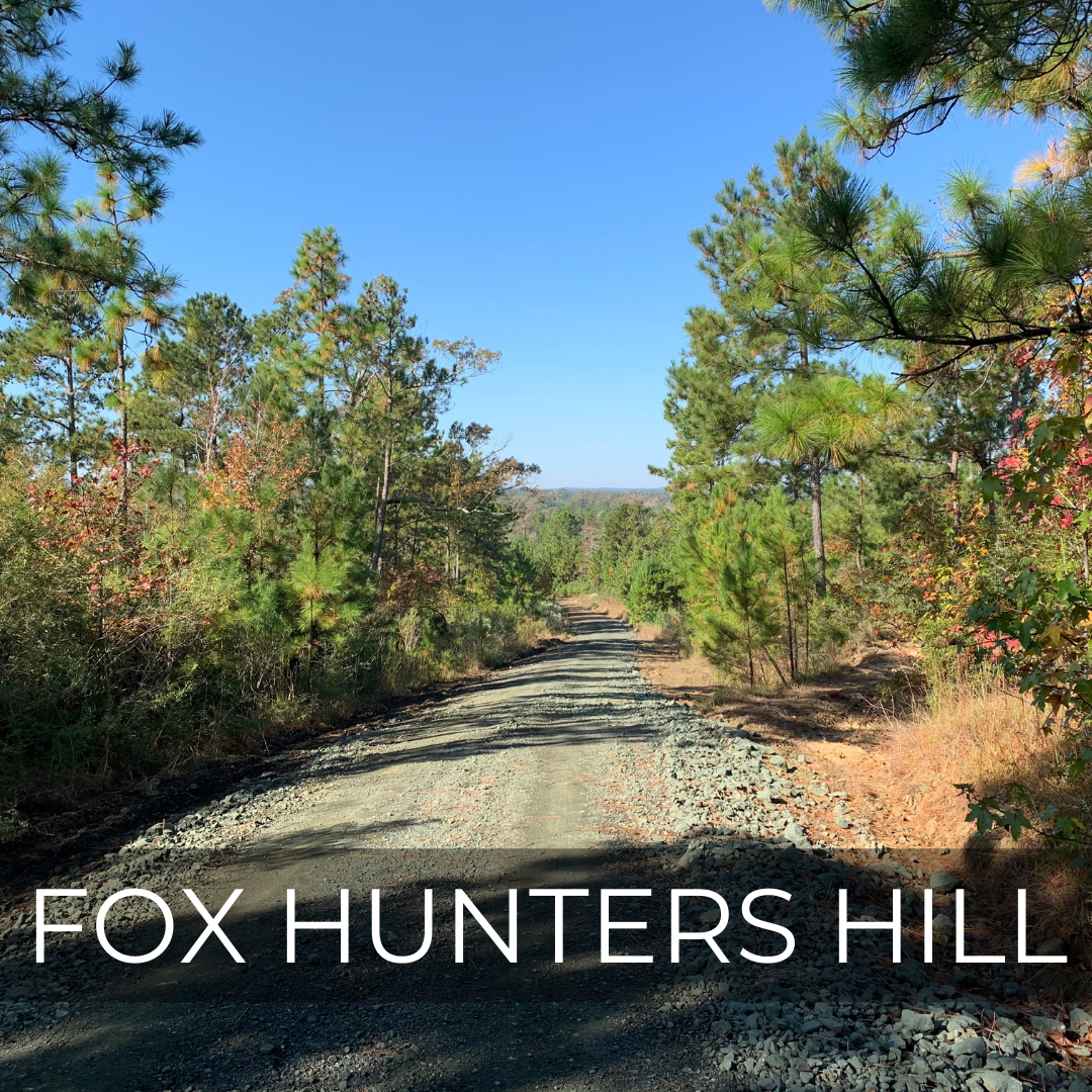 Forest Legacy Grants Acquire Fox Hunters Hill