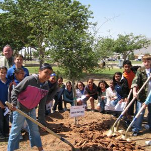 Official State Arbor Day Celebration in Plano