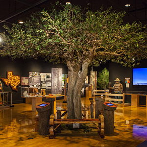 Texas A&M Forest Service Displays 100 Years of Service with New Museum Exhibit