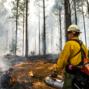 <p>$471,650 in grant funds available for