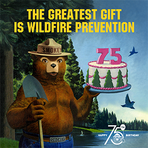 Beloved wildfire prevention icon rings in 75th birthday