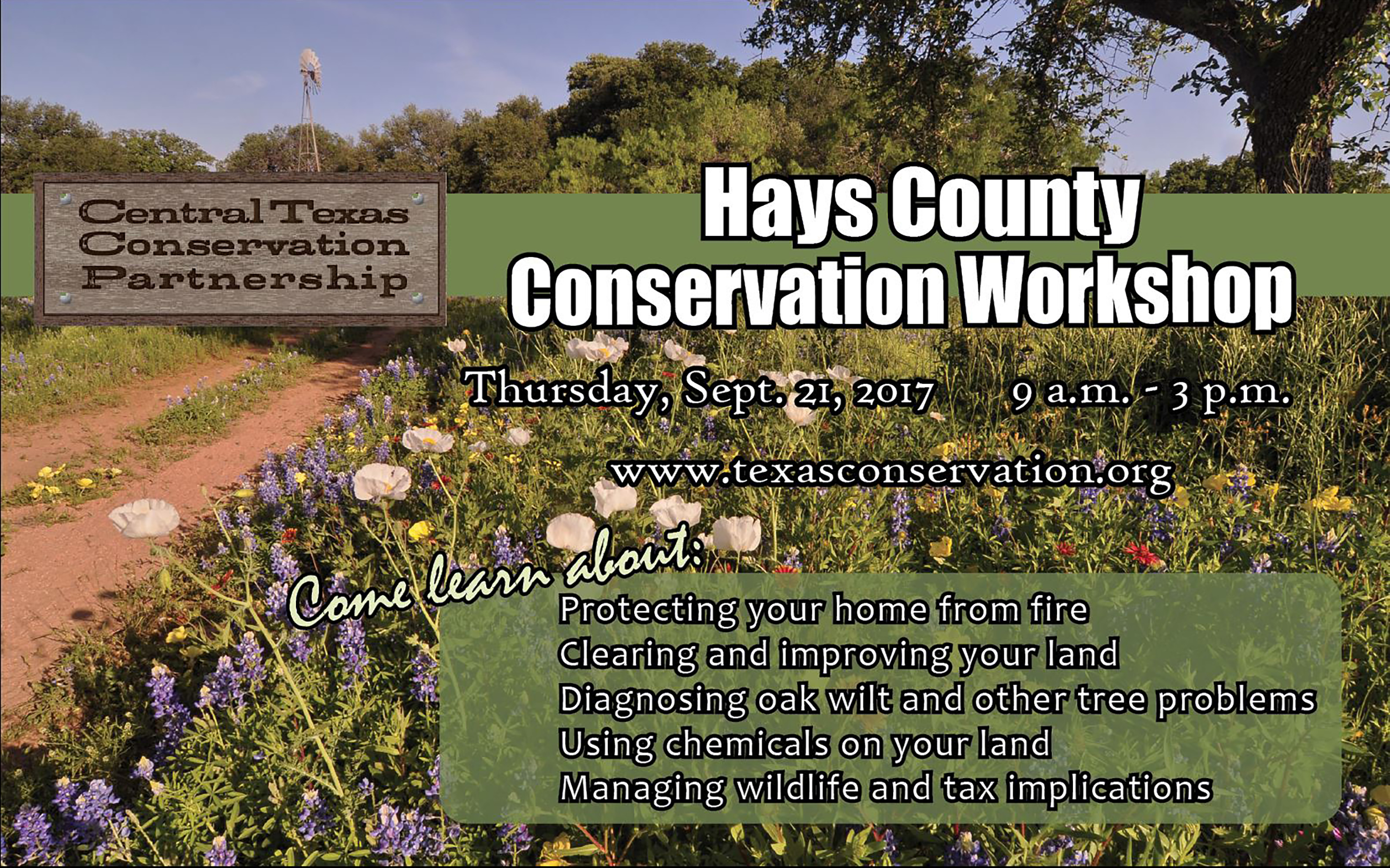 hays county workshop