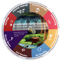Forest Benefits Wheel