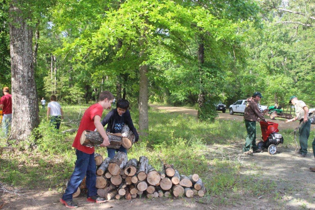 Two men stacking firewood while other people work in the woods surrounding them.