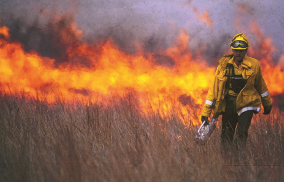 Prescribed burn being completed in tall grass