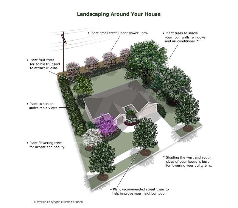 COLOR SKETCH OF AERIAL VIEW OF HOUSE AND YARD WITH TREES