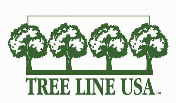 LOGO FOR TREE LINE USA PROGRAM.  GREEN OUTLINES OF FOUR TREES STANDING IN A ROW BELOW A SOLID GREEN LINE.