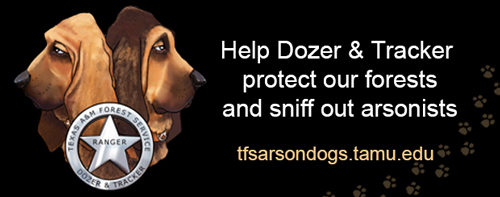 Picture of the TFS Arson Dogs; Dozer & Tracker