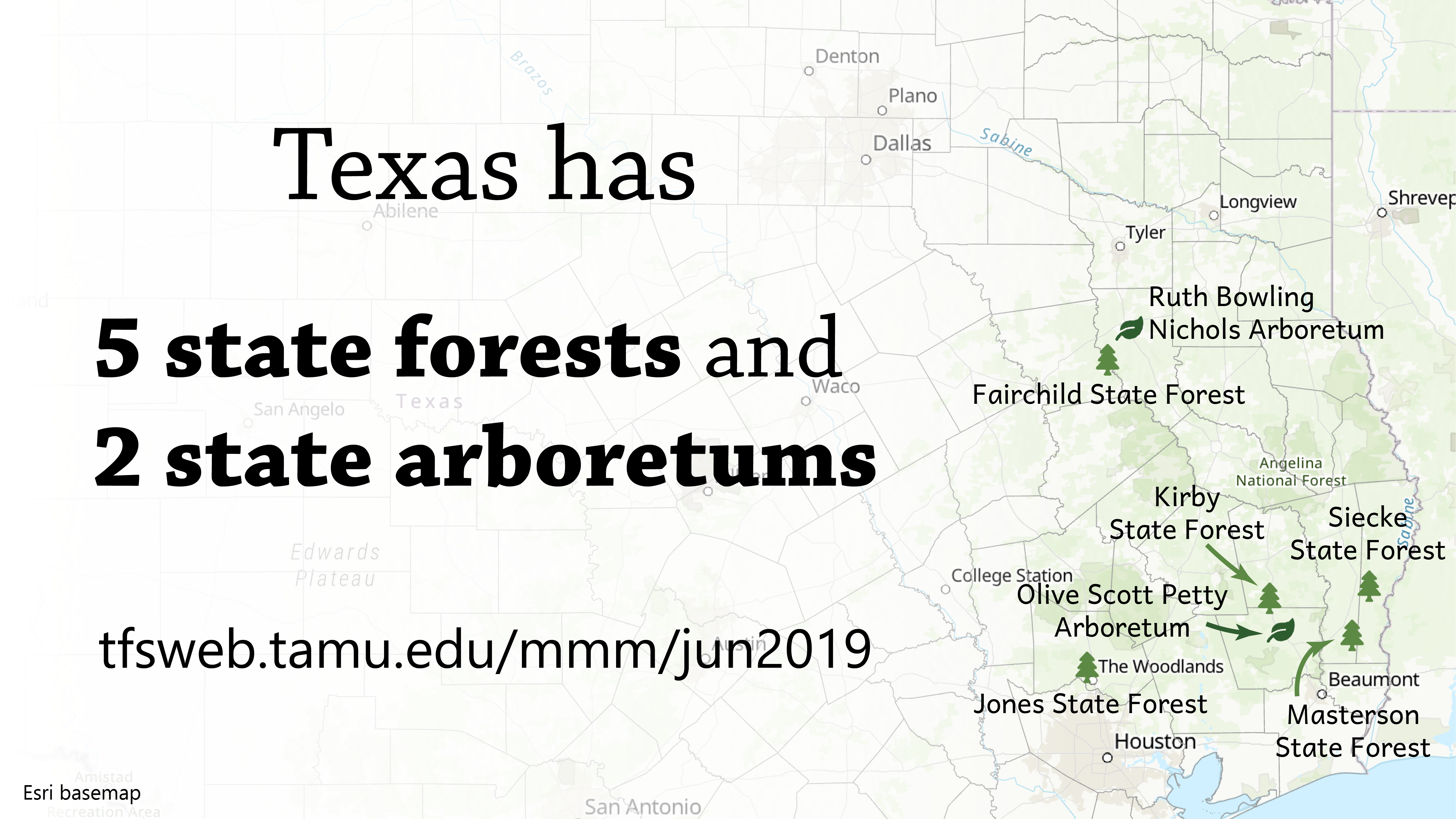 Texas State Forests and Arboretums