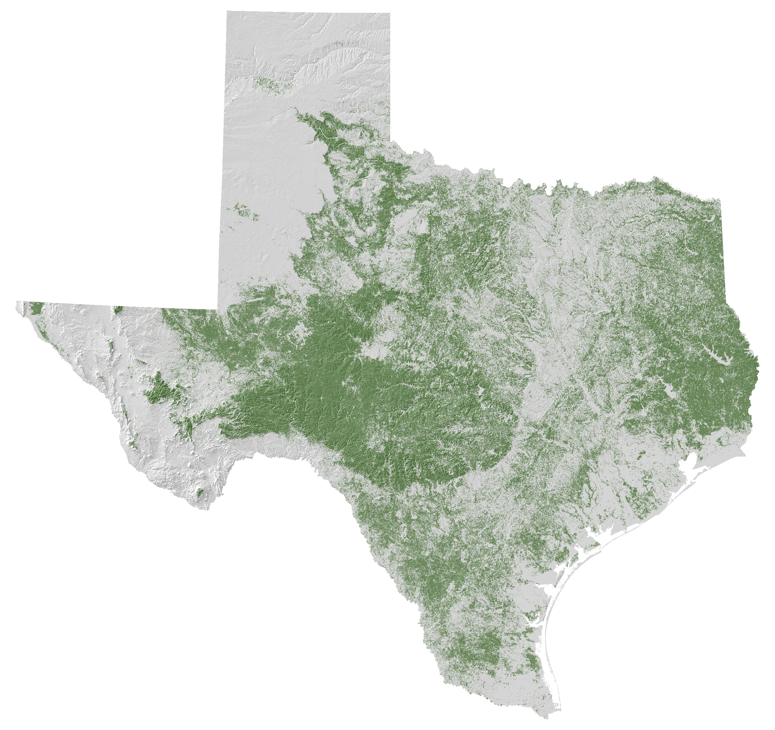 Map Of Texas Forests.Learn And Explore December 2017 Tfs