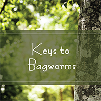 Keys to Bagworms