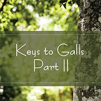 Keys to Galls Part II