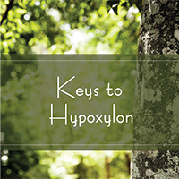 Keys to Hypoxylon