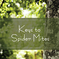 Keys to Spider Mites Texas A&M Forest Service Podcast Hosted by Paul Johnson