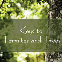 Keys to Termites and Trees