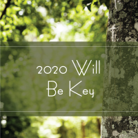 Trees Are Key 2020 Will be Key