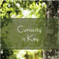 Trees Are Key Curiosity is Key