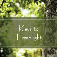 TAK 253 Keys to Fireblight