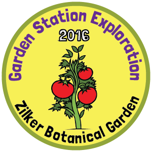 Zilker Botanical Garden badge