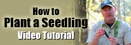 How to Plant a Seedline Video Tutorial